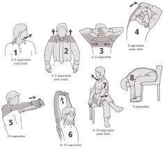Creo que este es un buen resumen de estiramientos y ejercicios para la espalda.